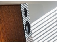 The Audio Physic Avanti Speakers